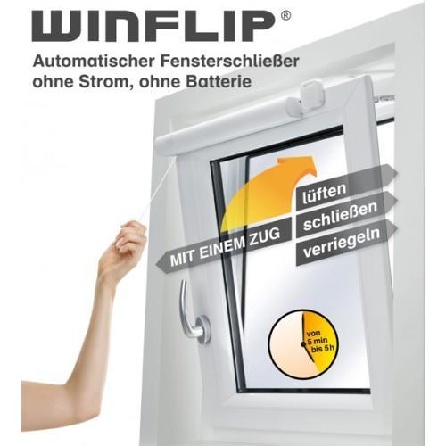 WinFlip 0.50